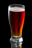 Beer, amber ale Royalty Free Stock Photos