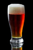 Beer, amber ale Royalty Free Stock Image