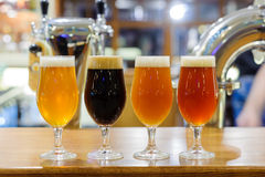 Beer. An assortment of different beers Royalty Free Stock Images