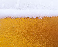 Beer backgound Royalty Free Stock Image