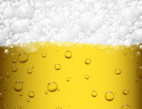 Beer background Stock Photography