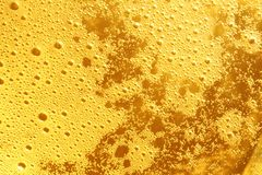 Beer background. Closeup of beer froth abstract background Stock Images