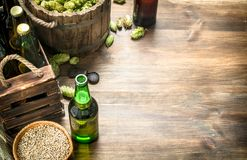 Beer background. Beer in bottles and ingredients . On a wooden table Stock Images