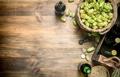 Beer background. Beer in bottles and ingredients . On a wooden table Royalty Free Stock Image