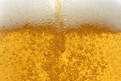 Beer background Royalty Free Stock Images