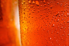 Beer background, macro flowing drops on the glass Royalty Free Stock Photo