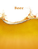 Beer background. The beer background with splash Royalty Free Stock Photo