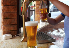 Beer on bar counter. Beer on draught in a bar Stock Photo