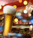 Beer at bar counter Royalty Free Stock Photo