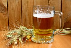 On the table is a foam beer in a mug. Beer, barley, background, wooden, amber, glass, malt, table, brewery, beverage, alcohol, foam, lager, brewing, bar, mug Royalty Free Stock Photo