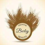 Beer and barley design. Royalty Free Stock Photo