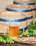 Beer barrels Stock Photos
