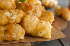 Beer Battered Wisconsin Cheese Curds. With Dipping Sauce royalty free stock photo