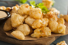 Beer Battered Wisconsin Cheese Curds. With Dipping Sauce stock photos