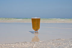 Beer On Beach. Close up of a glass on beer sitting on a sandbank in the Caribbean sea Stock Images