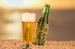 Beer on a beach photo concept Stock Images