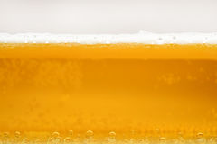 Beer being poured into a mug Royalty Free Stock Image