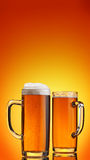 Beer beverage Stock Photography