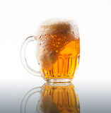 Beer in big mug on clear white background Stock Photos