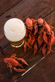 Beer and boiled crawfish Stock Image