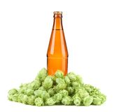 Beer botlle and green hop. Royalty Free Stock Photos
