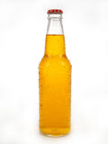 Beer Bottle. A cold bottle of beer royalty free stock photo