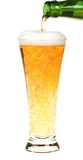 Beer with bottle Stock Photography