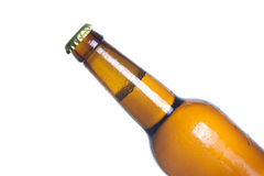 Beer bottle Royalty Free Stock Image