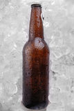 Beer bottle Royalty Free Stock Photos