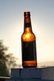Beer Bottle. Illuminated bottle stock images
