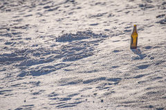 Beer bottle on a beach Stock Image