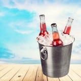 Beer bottle. Beer bucket cinco de mayo ice mexico ice bucket