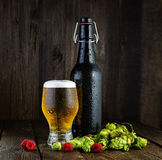 Beer bottle and beer glass with raspberries and hops Royalty Free Stock Photos