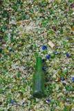 Beer Bottle on Broken Glass Stock Photos