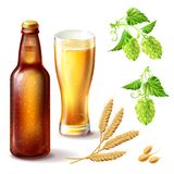Beer bottle of brown glass with a full glass, wheat and hops. Stock Photo