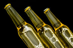 Beer in bottle with bubbles closeup isolated Royalty Free Stock Images