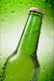 Beer bottle close up. Beer bottle isolated on green background stock images