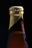 Beer bottle crown Royalty Free Stock Images