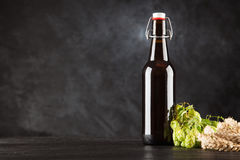 Beer bottle on dark background Royalty Free Stock Photos