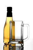 Beer bottle and empty beer glass Royalty Free Stock Photos