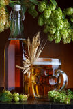 Beer bottle and glass with fresh green hop Royalty Free Stock Photography