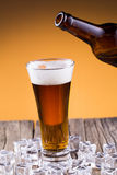 Beer bottle with a glass and ice on golden background. Royalty Free Stock Photos
