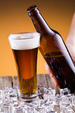 Beer bottle with a glass and ice on golden background. Stock Photography