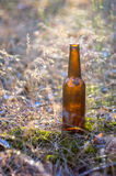 Beer bottle on the ground Stock Image