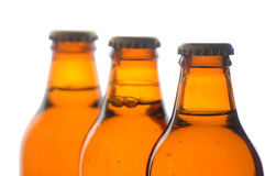 Beer bottle group of three fresh beer Stock Image