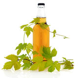 Beer Bottle and Hop Leaves Royalty Free Stock Images