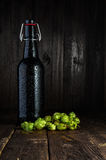 Beer bottle and hops Royalty Free Stock Photography