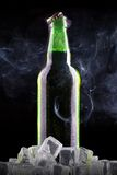 Beer bottle with ice Royalty Free Stock Images