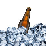 Beer Bottle and Ice Cubes Royalty Free Stock Photos
