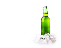 Beer bottle in ice cubes Royalty Free Stock Images